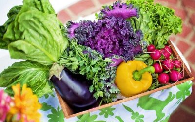 Are Organic Foods Better for Weight Loss Results?
