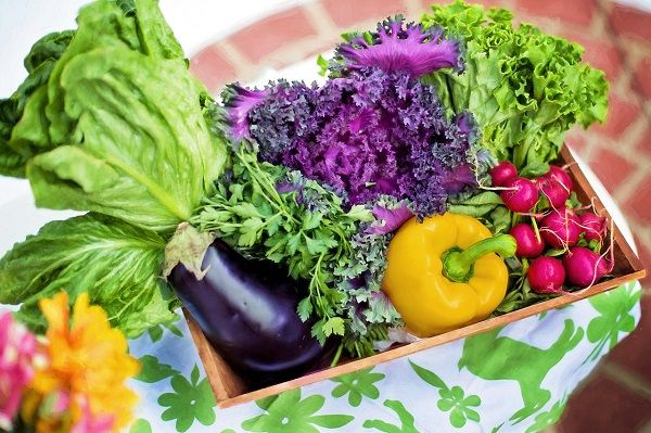 Are Organic Foods Better for Weight Loss?