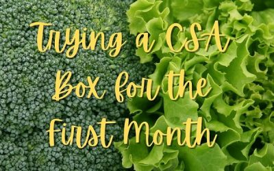 My Experience Trying a CSA Box for the First Month